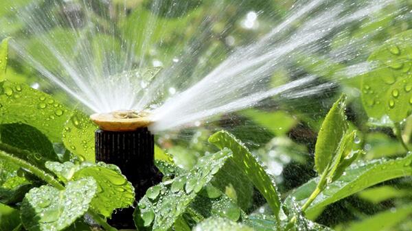 Studnie wiercone Woda w Ogrodzie